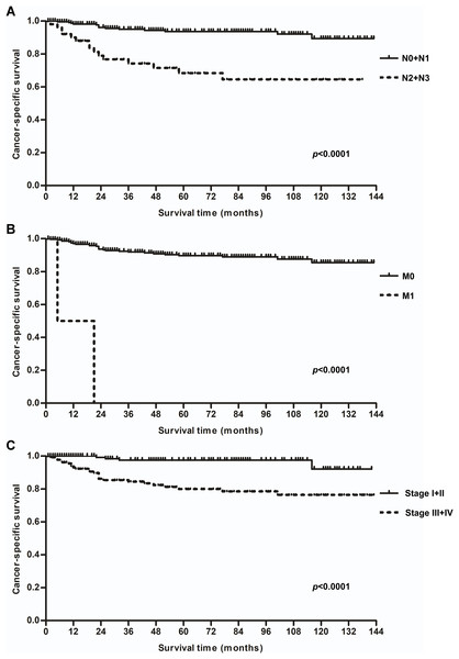 Kaplan–Meier cancer-specific survival rates for laryngeal squamous cell carcinoma patients aged younger than 40.