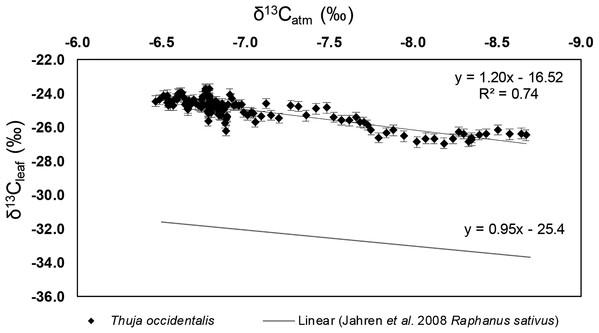 δ13Cleaf vs. δ13Catm values of Thuja occidentalis.