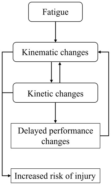 Theoretical framework summary.
