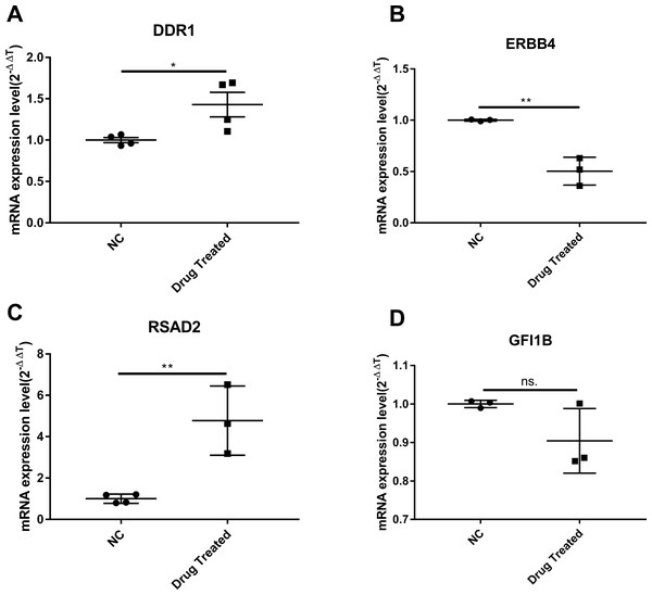 The validation of significant expression mRNAs in BCG-PSN treated RBL-2H3 cell.