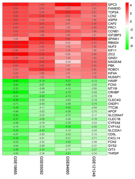 Log FC Heatmap of the top 20 DEGs (upregulated genes and downregulated genes) expression in all datasets.