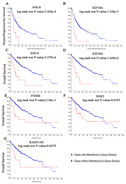 (A, B) Disease-free survival analyses and (C–G) overall survival of hub genes were performed using cBioPortal online platform.