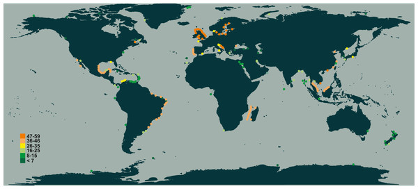 Species richness of Chaetoceros estimated from literature data.