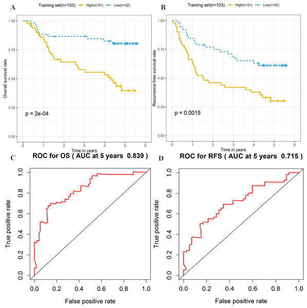 Prognostic significance evaluation of four-lncRNA signature for overall survival (OS) and recurrence-free survival (RFS) in the training set.
