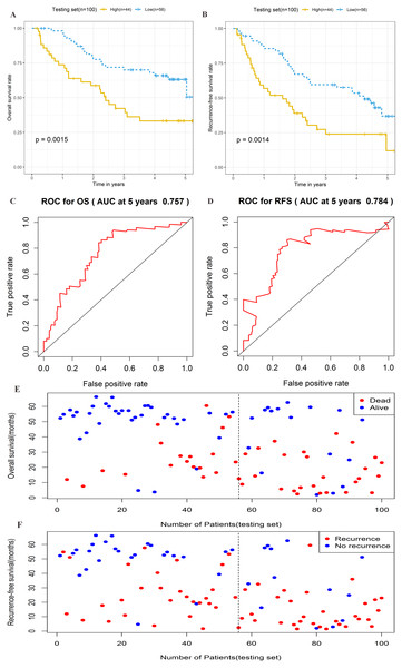 Prognostic performance of four-lncRNA signature on overall survival(OS) and recurrence-free survival(RFS) in the testing set.