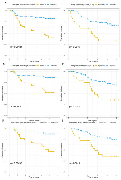 Kaplan–Meier curves of the overall survival for high-risk and low-risk patients with different clinical characteristics in training set and testing set.