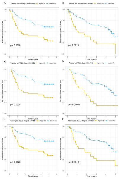 Kaplan–Meier curves of the recurrence-free survival for high-risk and low-risk patients with different clinical characteristics in training set and testing set.