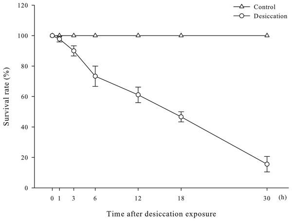 Survival rates of A. japonicus after desiccation.