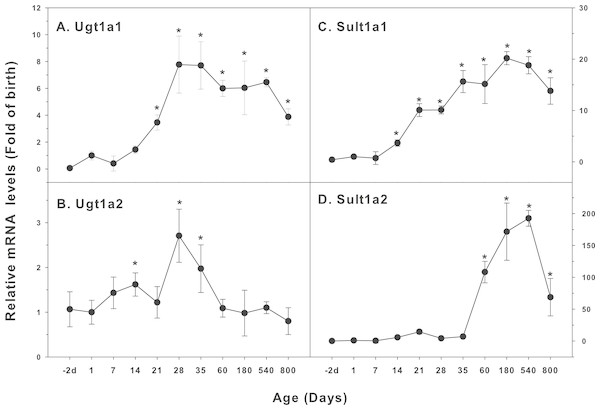 Age-related mRNA expression of UGT and SULT family genes in livers of male rats.
