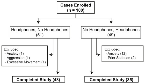 Flowchart showing the distribution of 100 privately-owned dogs randomized to undergo collection of systolic blood pressure measurements with and without headphones using a crossover design.