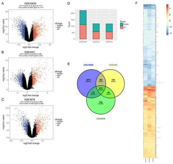 Gene expression of each dataset.