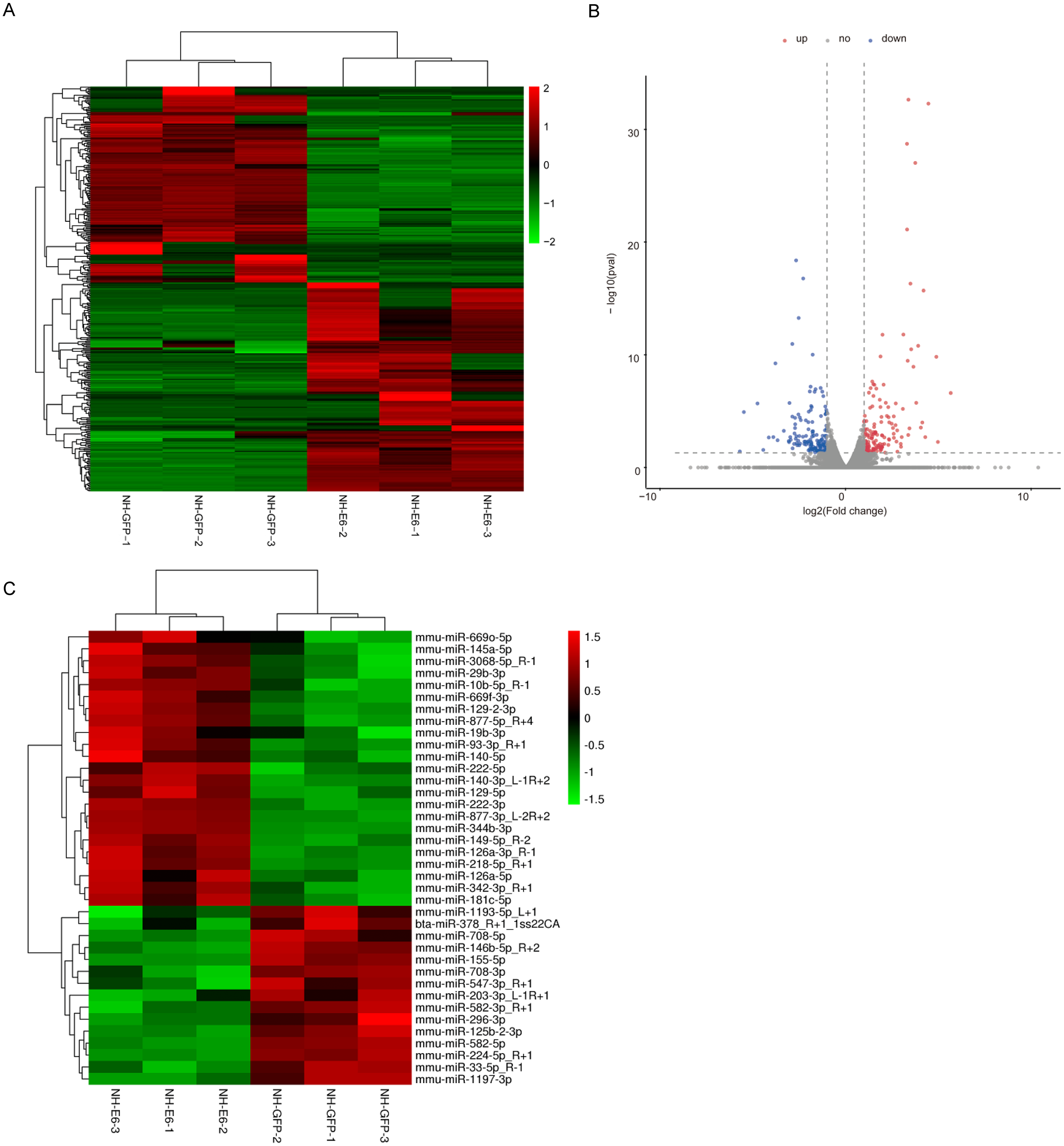 Integrated mRNA and miRNA profiling in NIH/3T3 cells in response to
