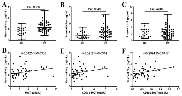 Plasma IFN-γ, TNF-α, and IL-17 levels in patients with OA.