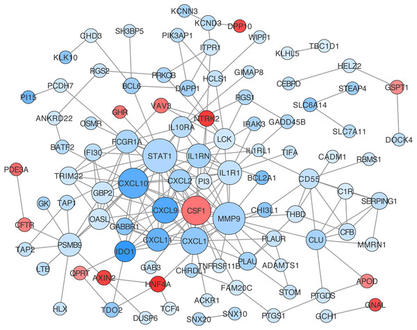 Protein-protein interaction (PPI) network construction for DEGs in ceRNA network.