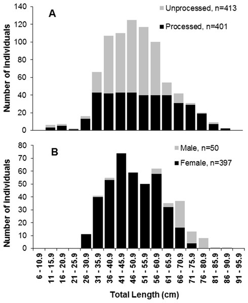 Length frequencies of S. trispinosus individuals captured in the Abrolhos Bank, Brazil (2010–2013).