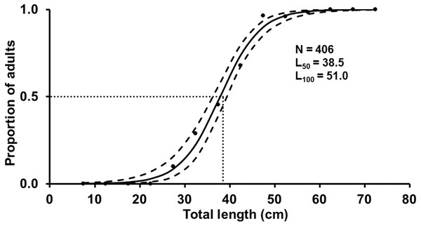 Estimated logistic regression of the proportion of mature S. trispinosus females from the Abrolhos Bank, Brazil (maximum of the posterior distribution).