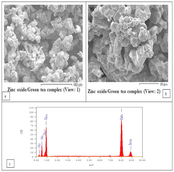 Scanning Electron Microscopy (SEM) analysis showing the morphology of the prepared ZnO nanoparticles.