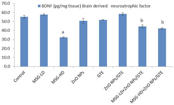 Brain derived neurotrophic factor (BDNF) in the rat brains.
