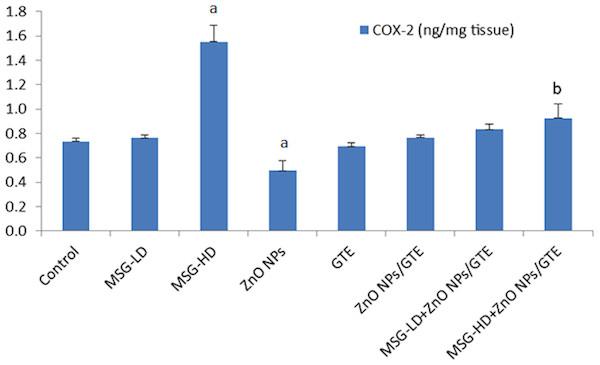 Cyclooxygenase-2 (COX-2) activity in the rat brains.