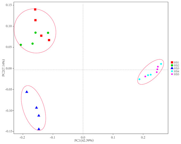 The principal coordinate analysis (PCoA) using weighted UniFrac metrics.