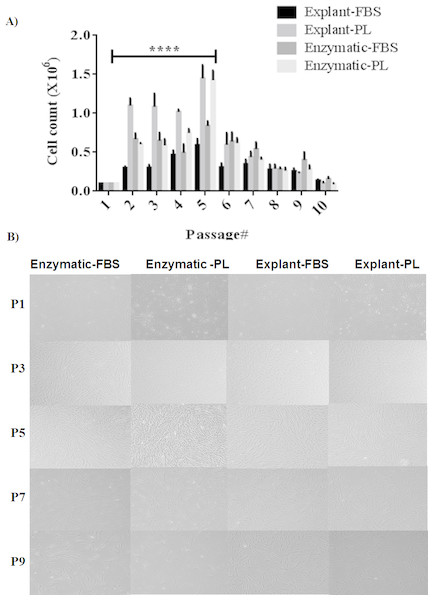 Evaluation of stemness characteristics of PDLSCs.