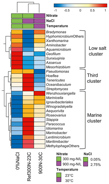 Hierarchical clustering of selected bacterial taxa in biofilm culture metatranscriptomes.