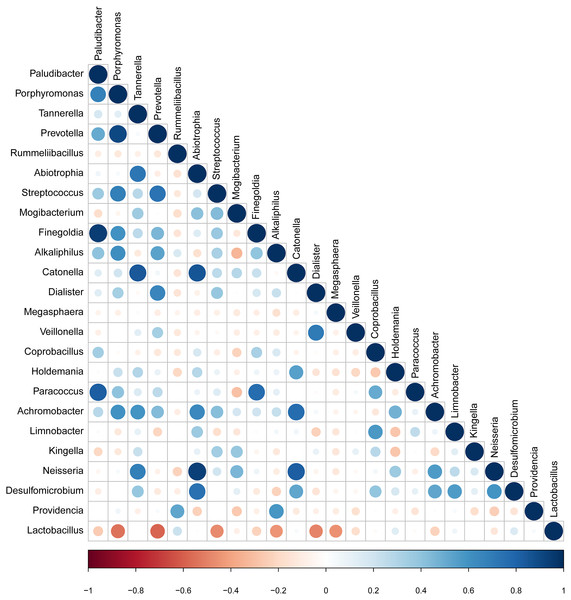 Correlation between candidate taxa. (The genus of significant difference between GBS positive and GBS negative was selected ( p<0.05, LDA > 2)).
