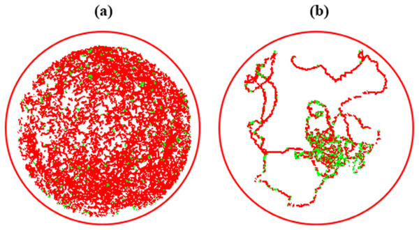 Displacement trails of Aedes aegypti larvae from control (A) and exposure to LC50 concentrations of pyriproxyfen (B).