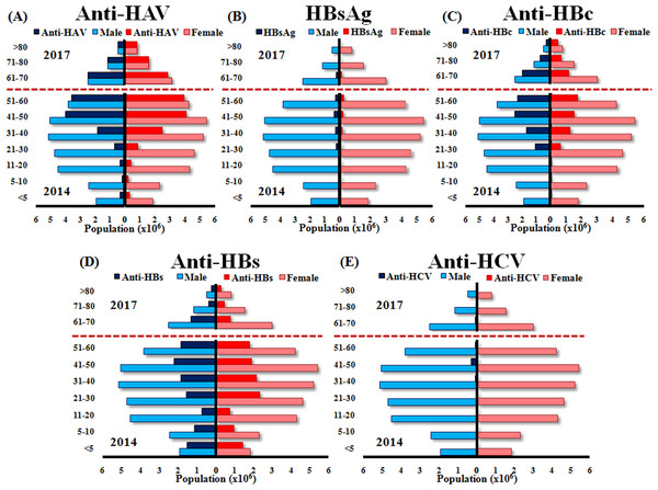 Estimated numbers of males and females positive for anti-HAV, HBsAg, anti-HBc, anti-HBs, and anti-HCV aged <5, 5–10, 11–20, 21–30, 31–40, 41–50, 51–60 (2014 data) and 61–70, 71–80 and >80 (2017 data).