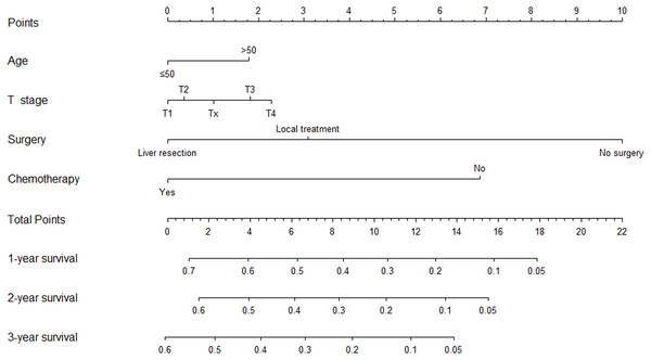 Nomogram to predict 1-, 2-, and 3-year overall survival of patients with pulmonary metastasis from hepatocellular carcinoma.