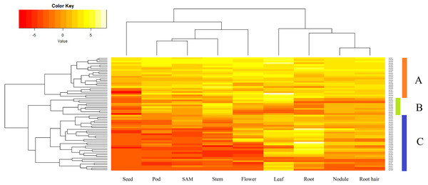 Expression analysis of GmVQ genes in different tissues and different stages.