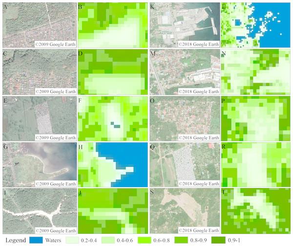 Vegetation coverage accuracy verification map.
