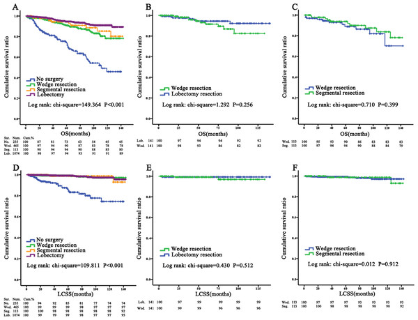 OS and LCSS for pulmonary TC patients evaluated using KM plots.