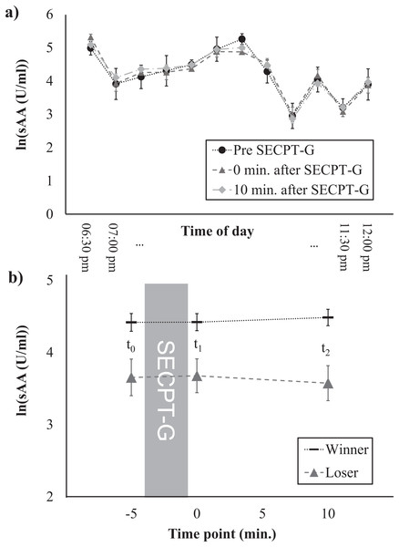 Salivary α-amylase levels at different times of the day (A) and time course of the sAA response, separately for winners and losers (B).
