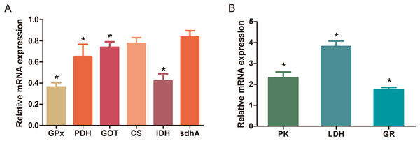 Changes in the relative mRNA expression levels of related genes after Al exposure.