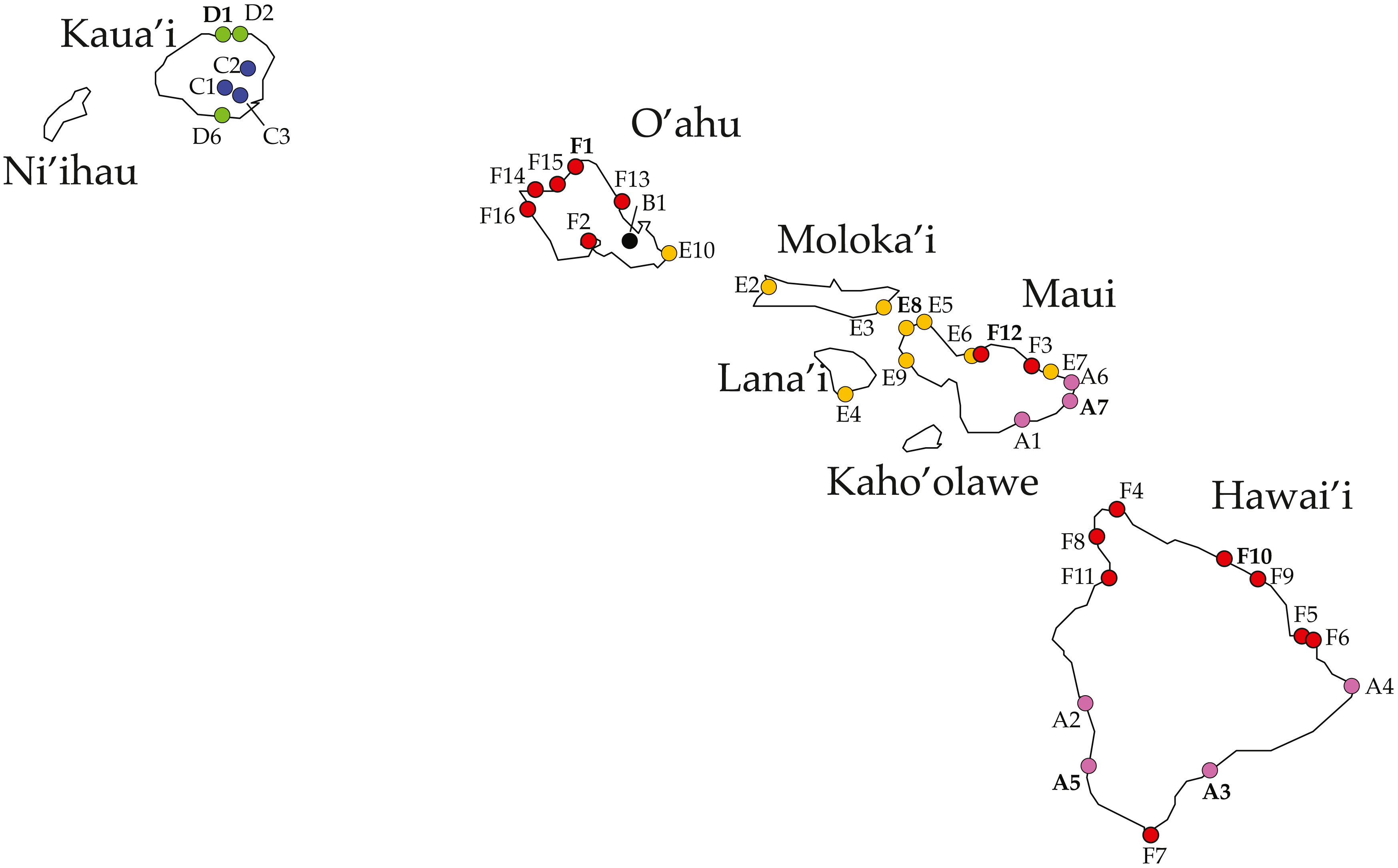 Molecular taxonomy of endemic coastal Ligia isopods from the