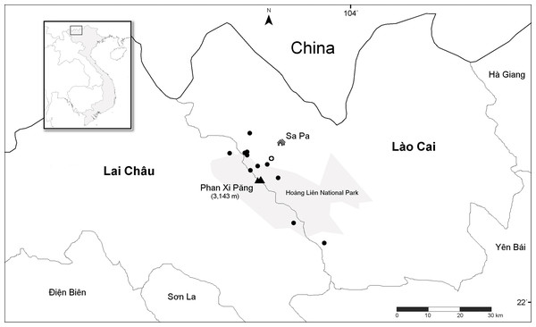 Distribution of Trichophorum scabriculme in the two northern Vietnamese provinces of Lai Châu and Lào Cai with China to the north.