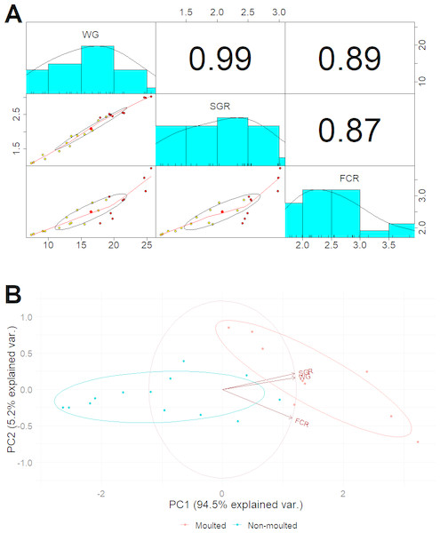 (A) Multiple regression analysis showing the relationship between the number of moults and health indices of marron after trial; (B) PCoA plot displaying the separation of marron regarding moult counts in two different feeding conditions.