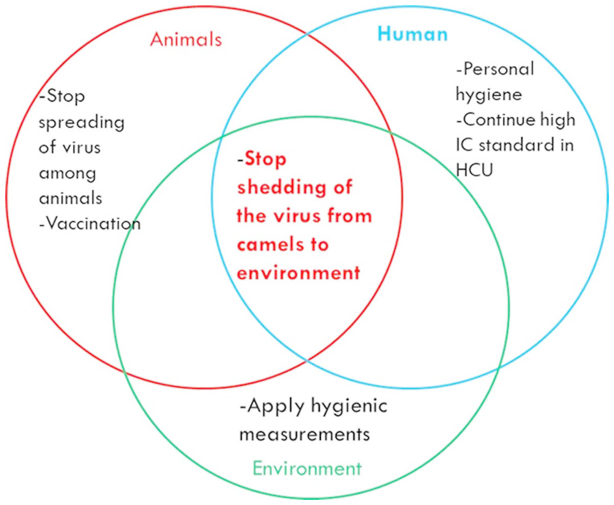 Middle East Respiratory Syndrome Coronavirus and the One