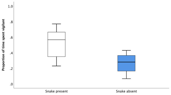 The average proportion of time (median, upper and lower quartile) spent vigilant 30 s after the snake absent and snake present alarm call during the recall playbacks.