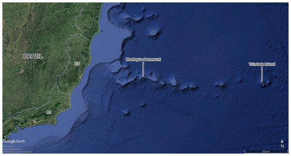 Montague seamount and Trindade Island.