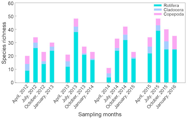 Seasonal variation in species richness of main zooplankton groups in Shahu Lake from April 2012 to January 2016.