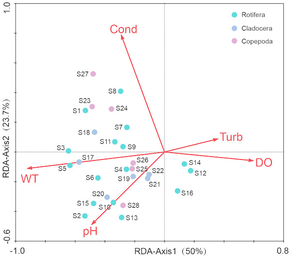 Redundancy analysis (RDA) of zooplankton dominant species and environmental factors in Shahu Lake (WT, water temperature; Cond, conductivity; DO, dissolved oxygen; Turb, turbidity).