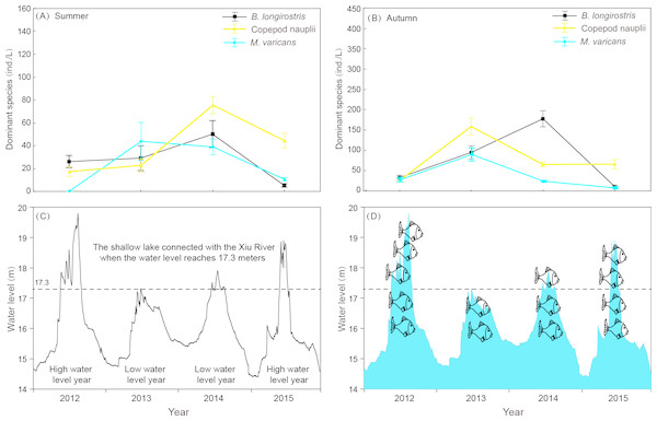 Interannual variation of zooplankton dominant species density in summer and autumn and diurnal variation of water level in 4 years of Shahu Lake.