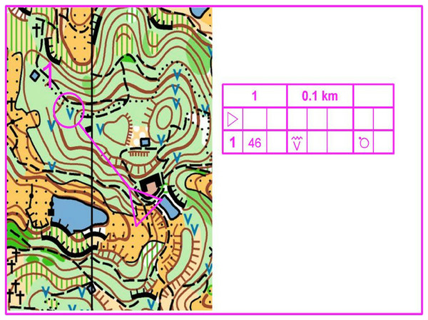 Example of a precise map for orienteering.
