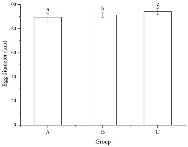 Egg diameter of Strongylocentrotus intermedius used for mating groups A (♀0 × ♂0 μW · cm−2), B (♀20 × ♂20 μW · cm−2) and C (♀20 × ♂0 μW · cm−2).