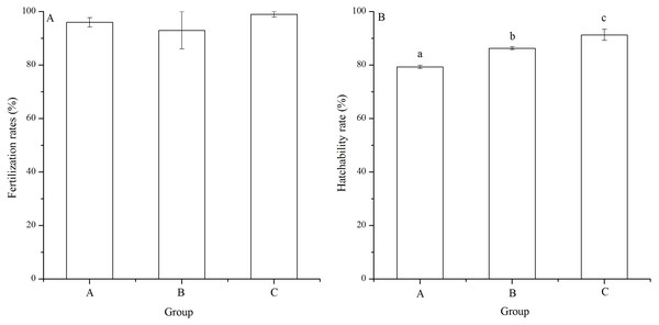 Fertilization rates (A) and hatching rates (B) of Strongylocentrotus intermedius in mating groups A (♀0 × ♂0 μW · cm−2), B (♀20 × ♂20 μW · cm−2) and C (♀20 × ♂0 μW · cm−2).