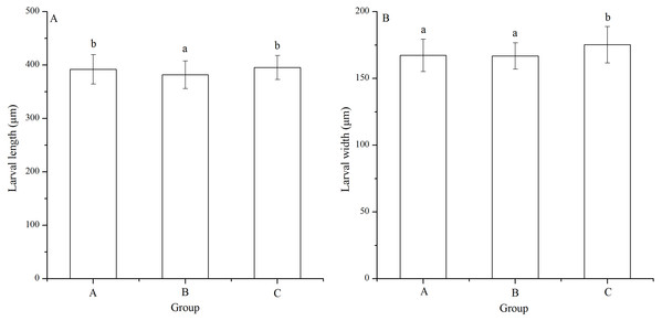 Larval length (A) and width (B) of Strongylocentrotus intermedius in mating groups A (♀0 × ♂0 μW · cm−2), B (♀20 × ♂20 μW · cm−2) and C (♀20 × ♂0 μW · cm−2).