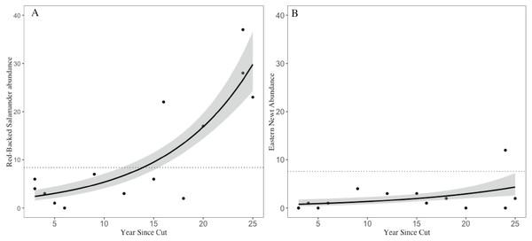 Trends in salamander abundance through the chronosequence.