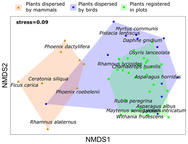 Non metric multidimensional scaling (NMDS) for plant species registered in vegetation samples and plant species dispersed by mammals and birds in Sierra de la Fausilla, Murcia Region.